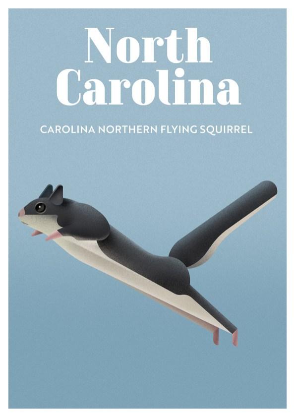 Endangered Animals Moss and Fog North Carolina