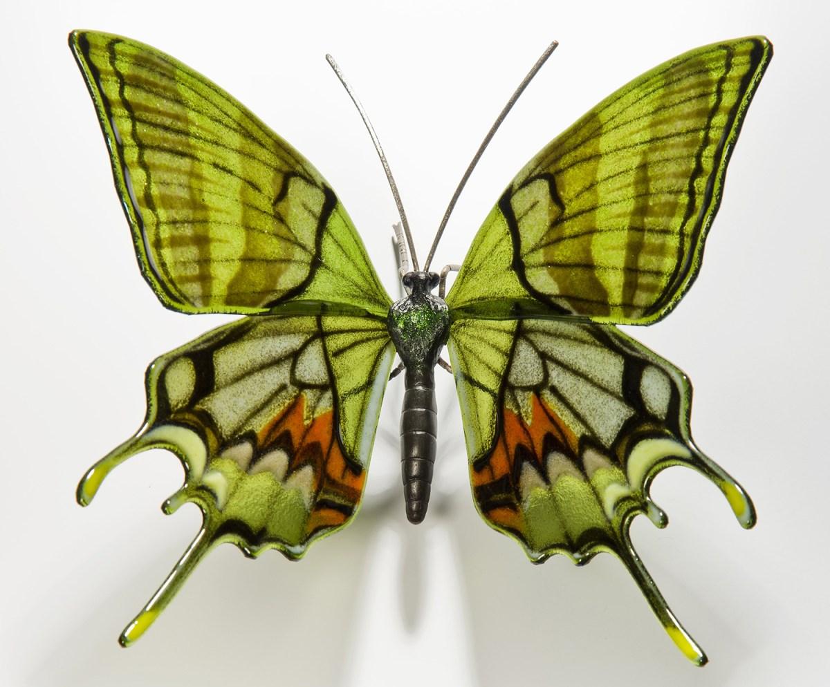 Kaiser-I-Hind-Butterfly-min-1