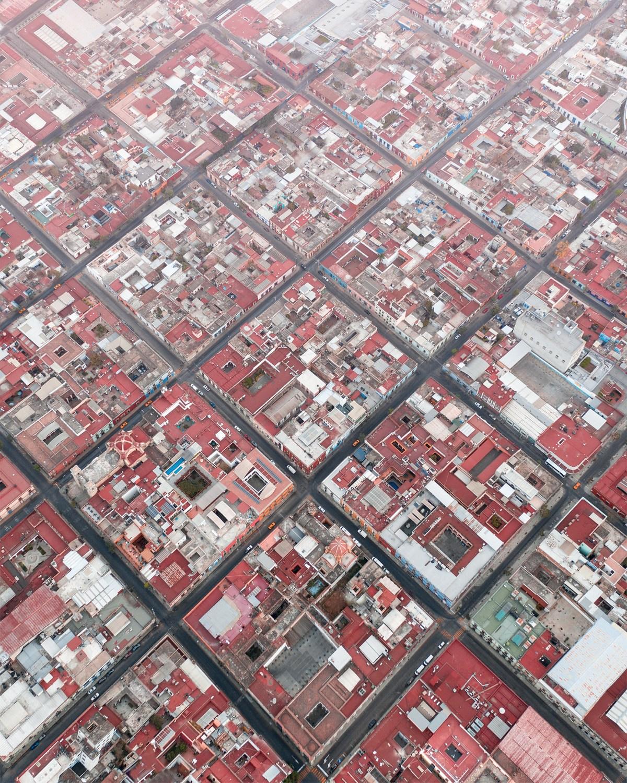 aerial-mexico-moss-and-fog-8