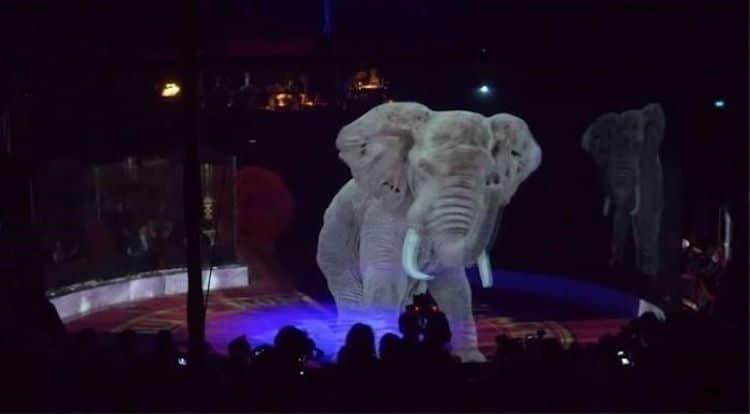 hologram-circus-animals-roncalli-6