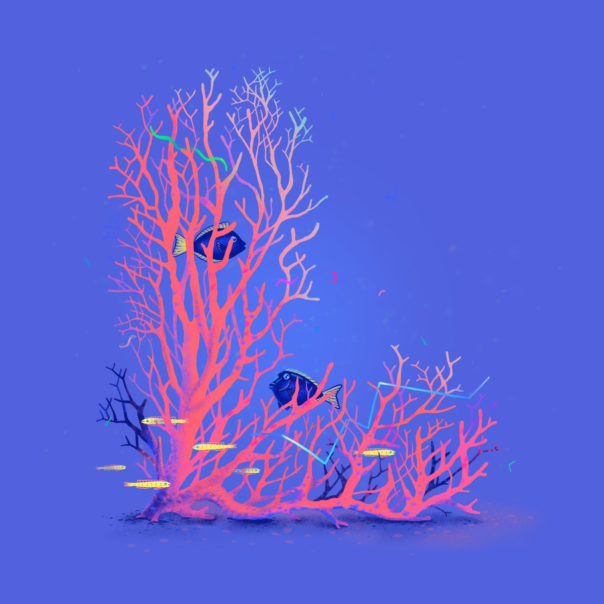 coral-l