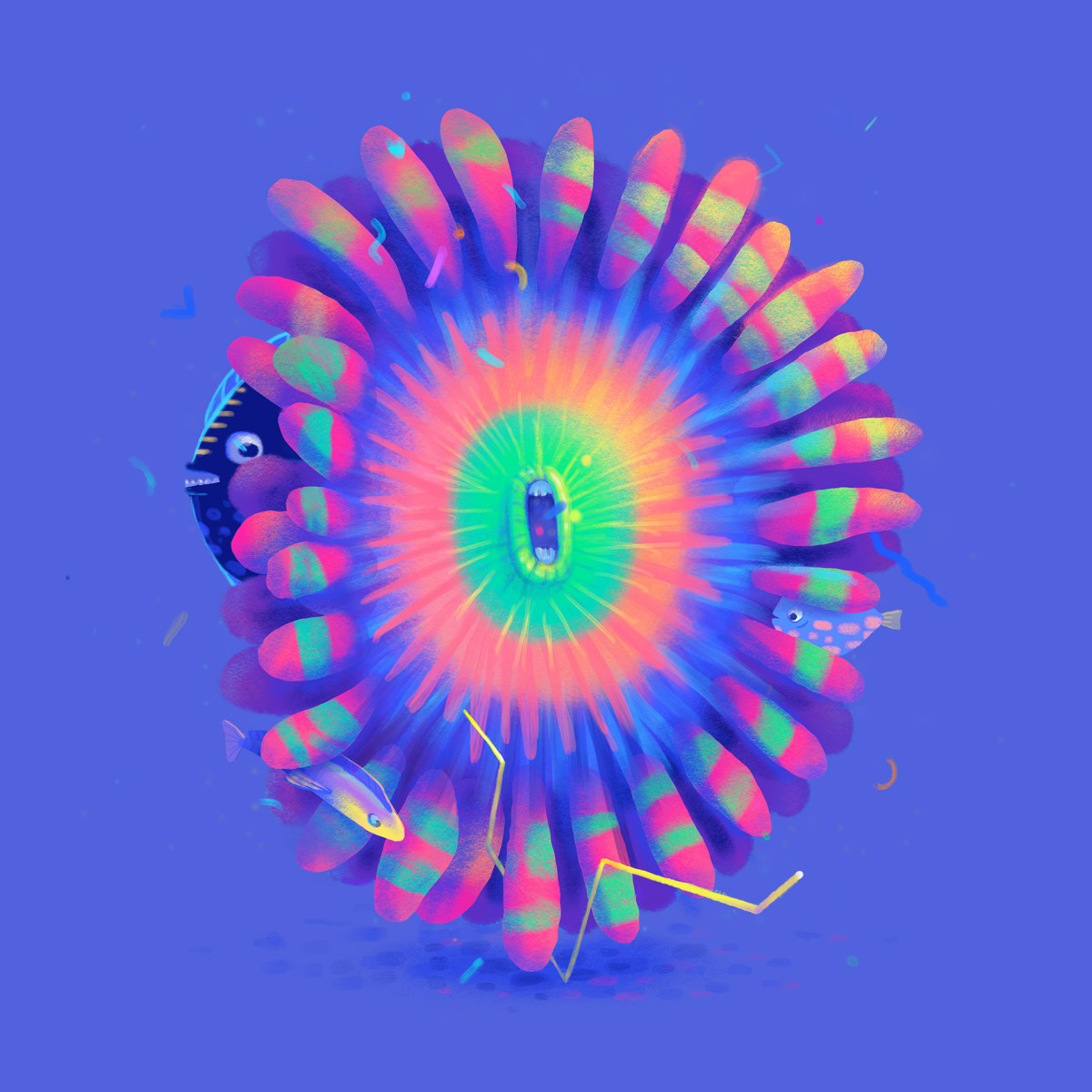 coral-o