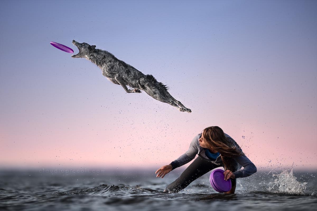 claudio-piccoli-dogs-in-action-12