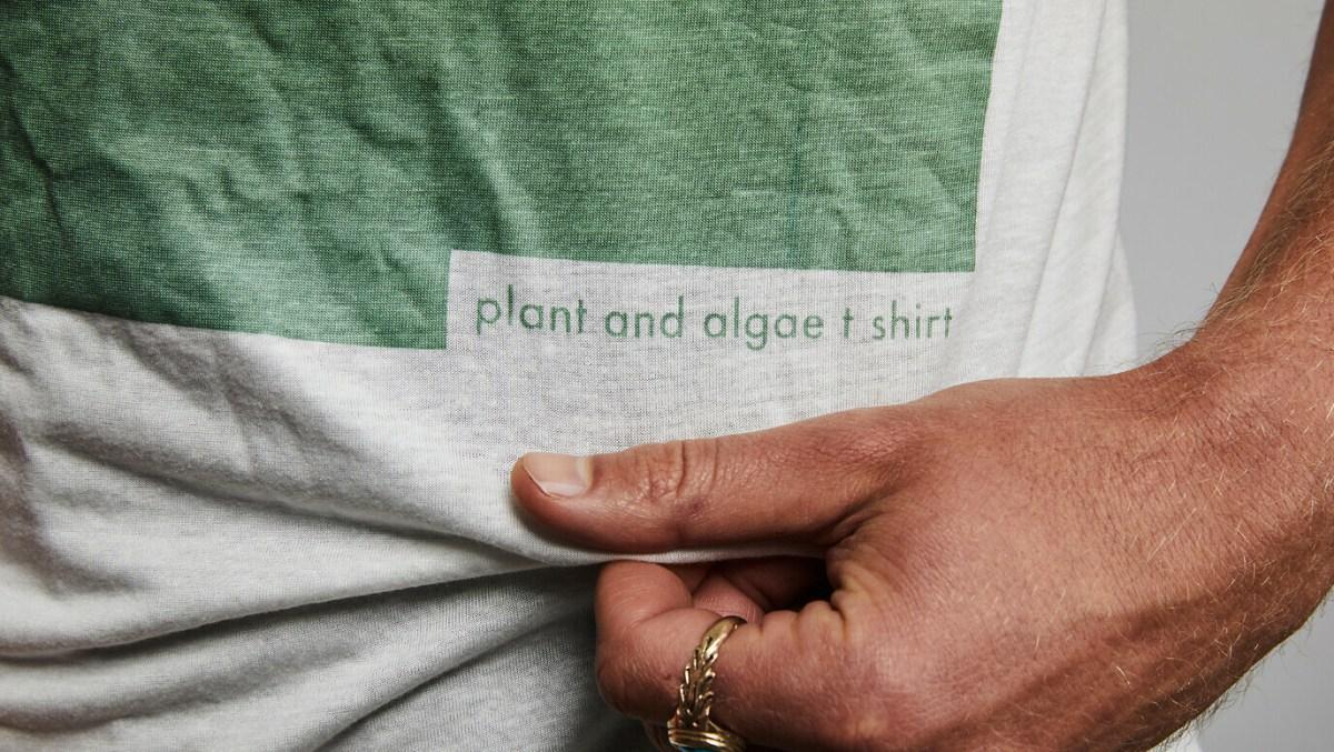 plant-and-algaet-60-1376-1376x776