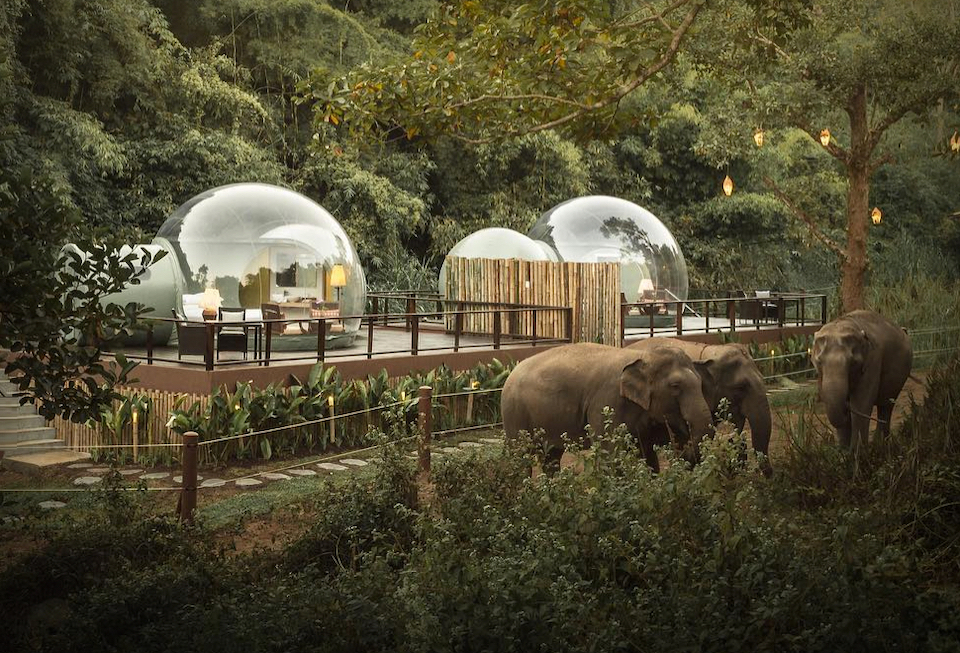 Anantara-Jungle-Bubbles-1