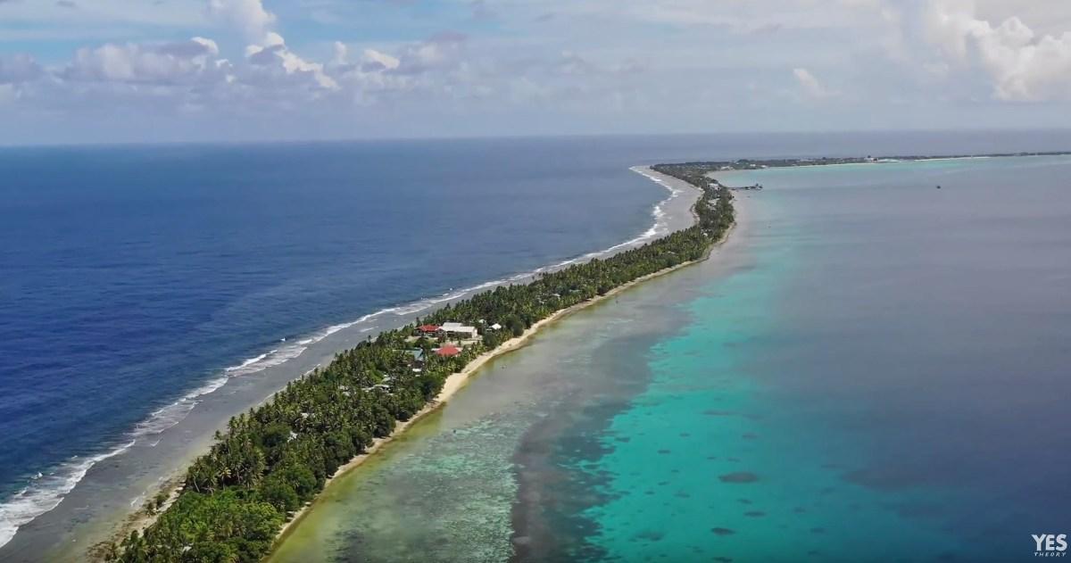 Tuvalu-moss-and-fog-2
