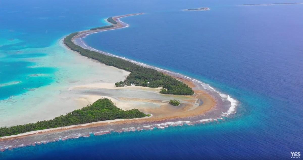 Tuvalu-moss-and-fog-4