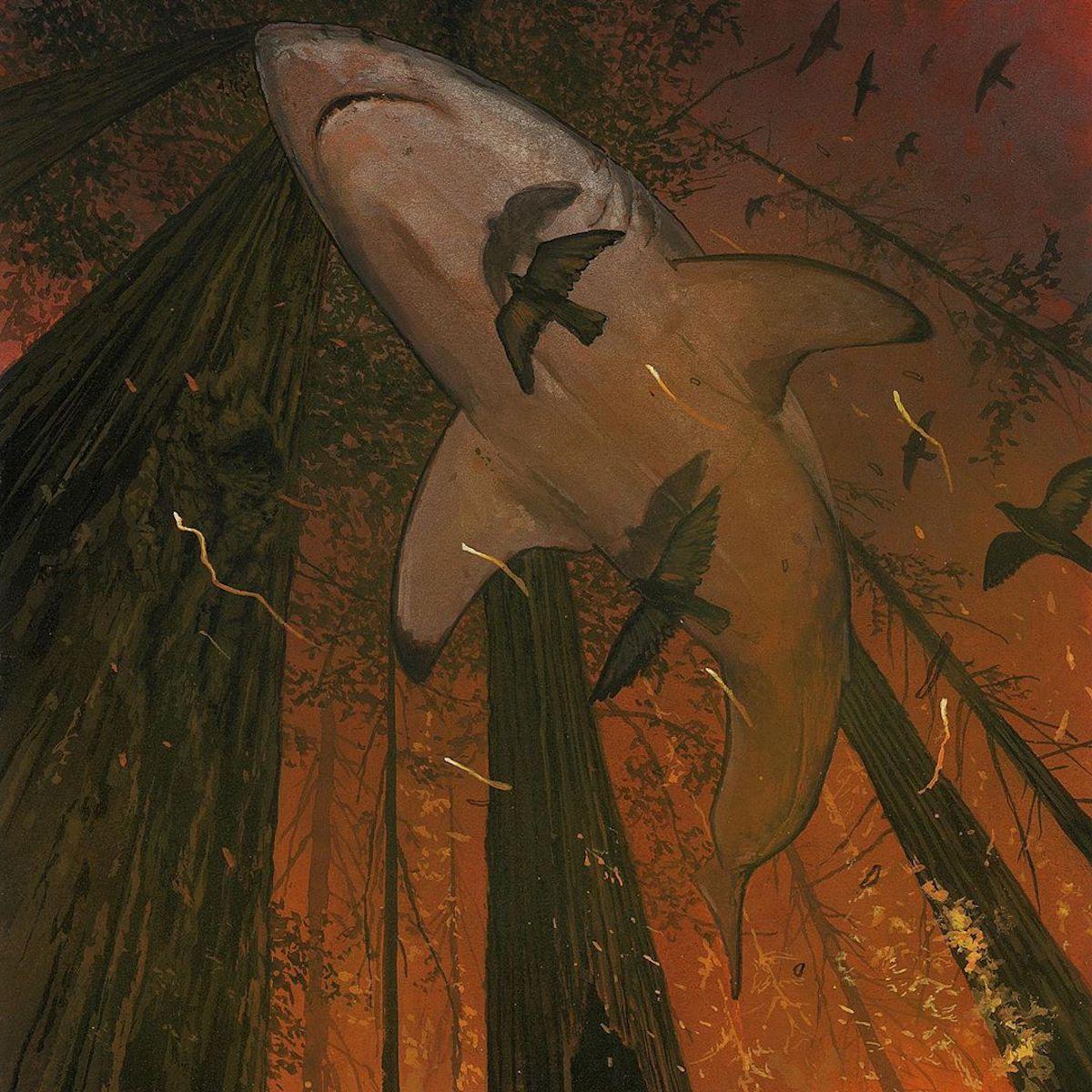 chris-austin-shark-paintings-moss-and-fog-7
