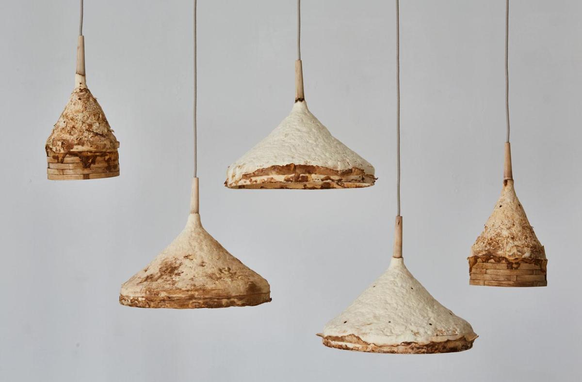 6.-sebastian-cox-ninela-ivanova-mycelium-timber-c-petr-krejci-photography