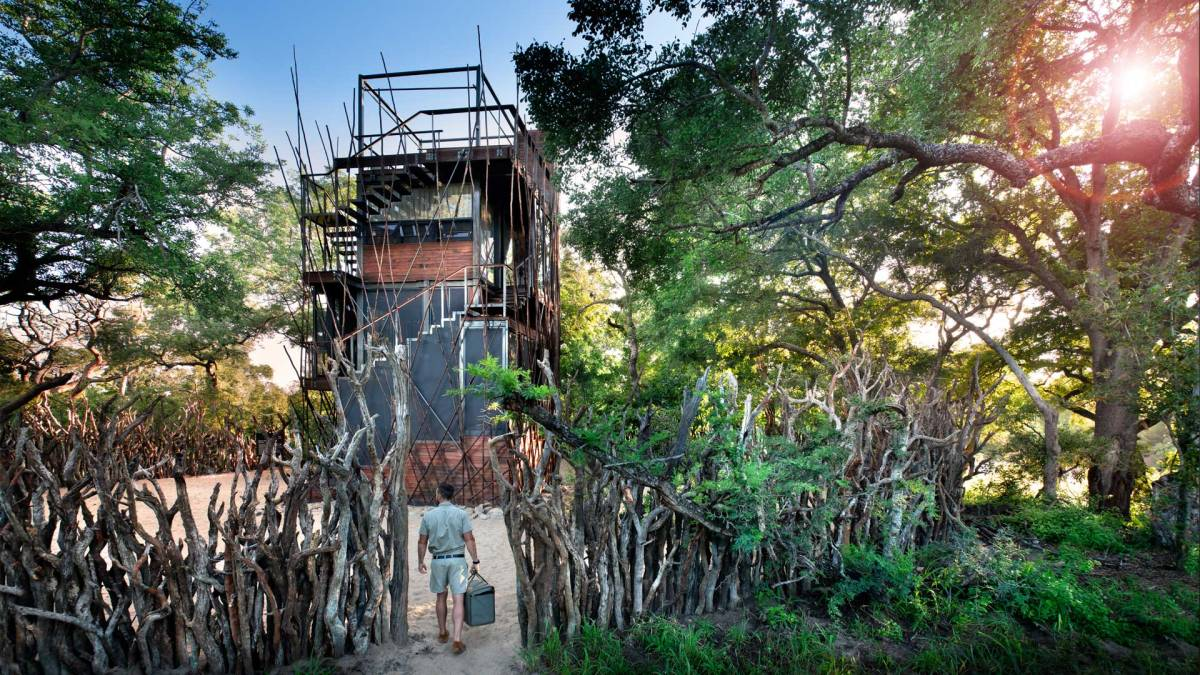 ngala-treehouse-exterior-guide-entrance