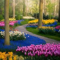 A Quiet Look at Keukenhof, the World's Most Beautiful Tulip Garden, Closed for the First Time in 70 Years