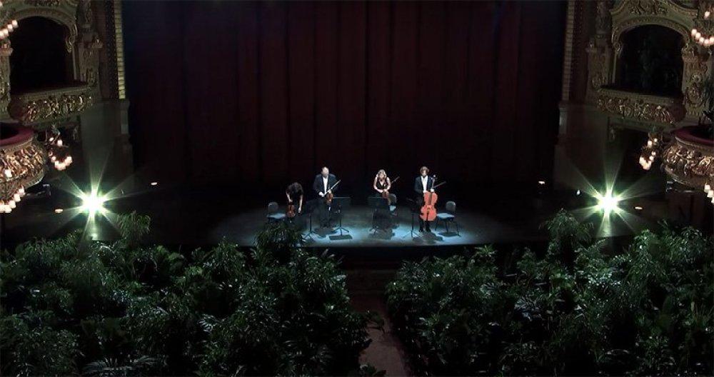 concert-for-plants-barcelona-gran-teatre-liceu-opera-house-3