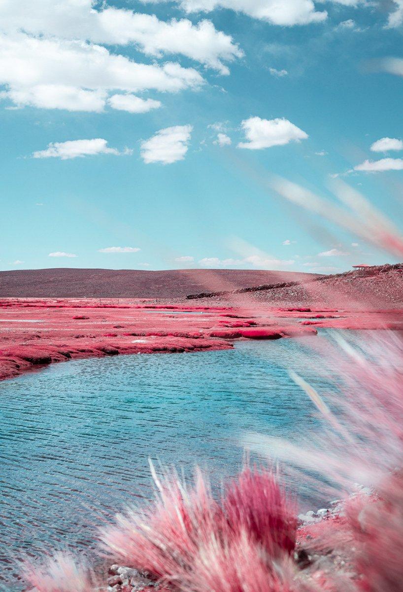 paolo-pettigiani-alpaca-river-infrared-photography-peru-moss-and-fog5