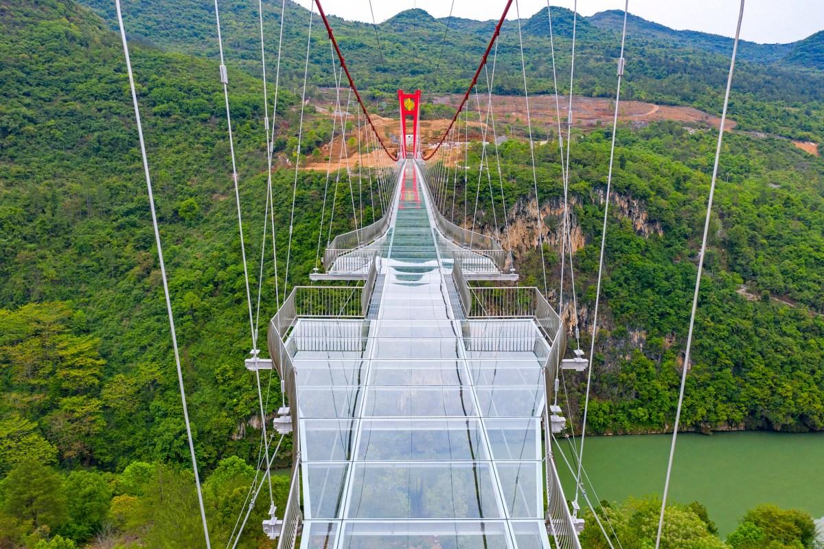 worlds-longest-glass-bridge-moss-and-fog-9