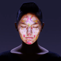 Mesmerizing Facial Mapping