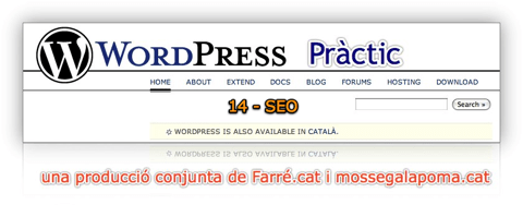 WordPress Pràctic 14 – SEO