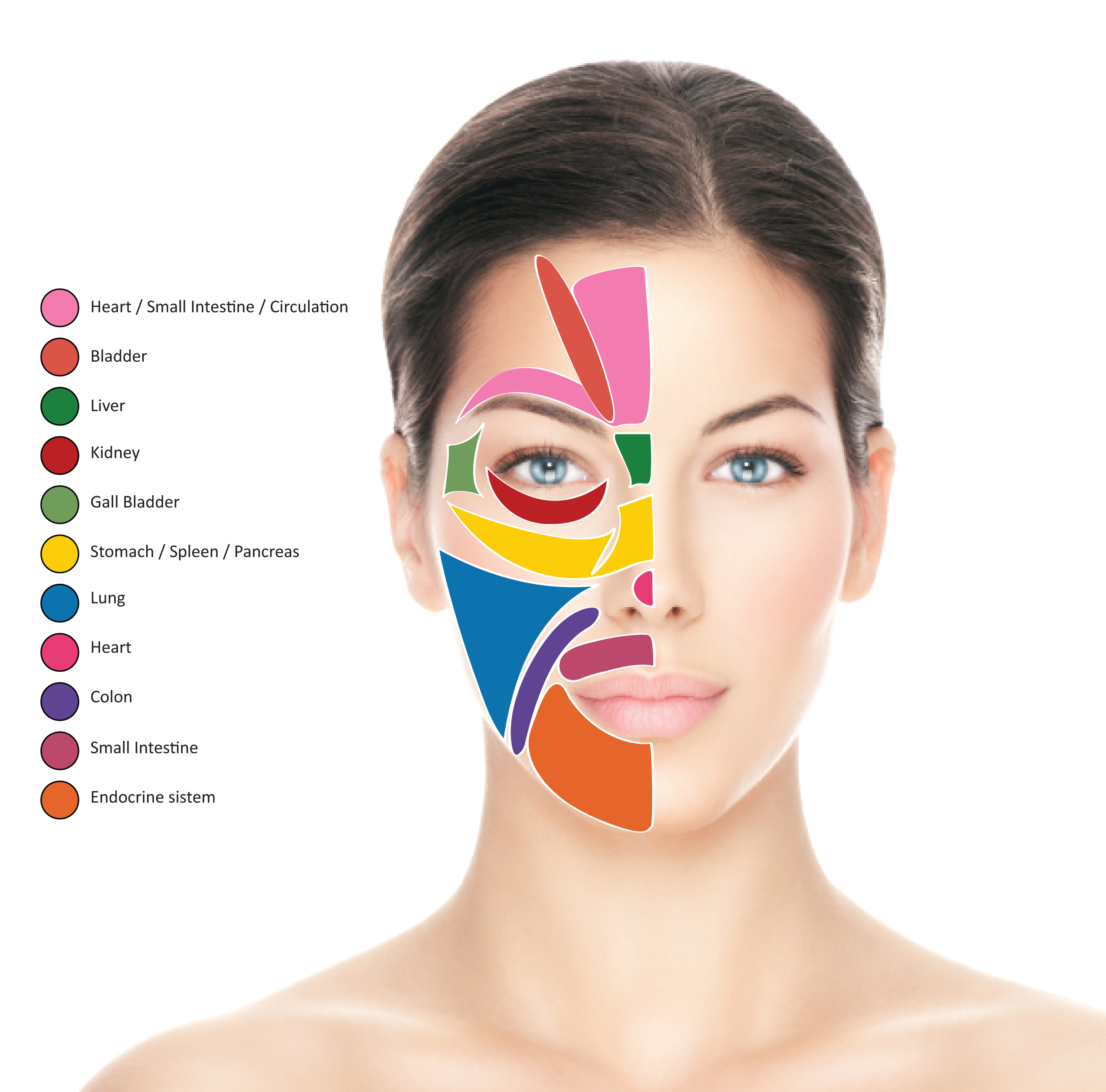 Face Mapping Spots Face Mapping For Acne   The Ultimate Guide