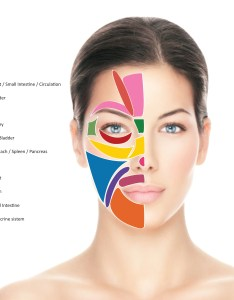 also face mapping for acne the ultimate guide rh mosskincare