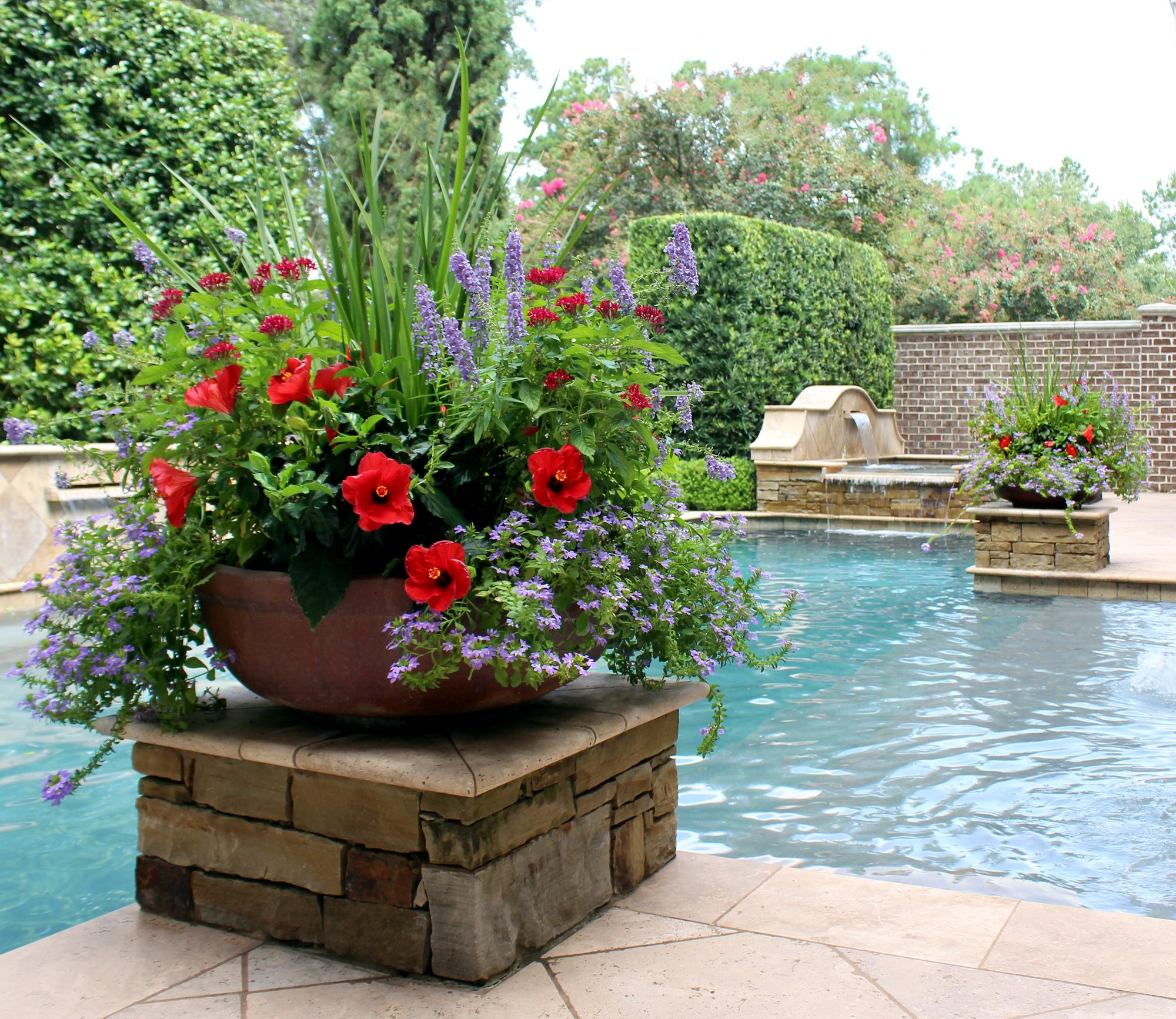 Summer Poolside Planters Moss Landscaping