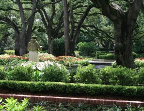Longfellow Gardens - View from Driveway