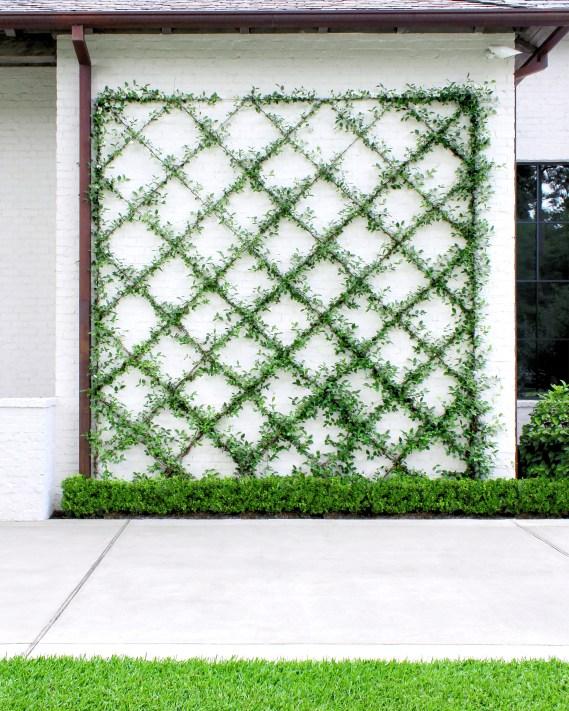 Diamond Trellis White Wall