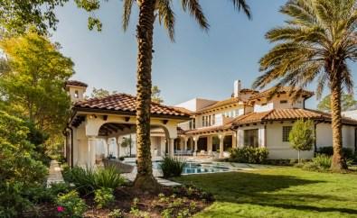Palm Trees in Backyard