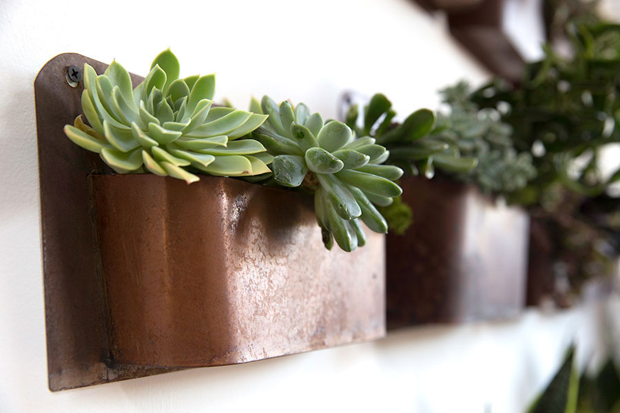 Rustic Wall Planter MOSS MANOR A Design House