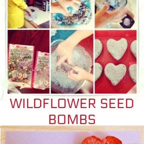 Seed-Bombs