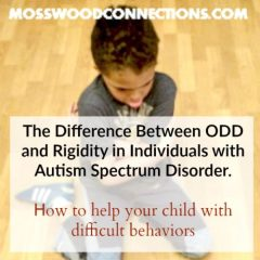 The Difference Between ODD and Rigidity in Individuals on the Autism Spectrum