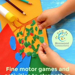 Help For The Hands Fine Motor Activities