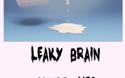 Are You Suffering from Leaky Brain Syndrome?