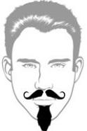 Beard Types - Imperial Beard - Mossy Beard