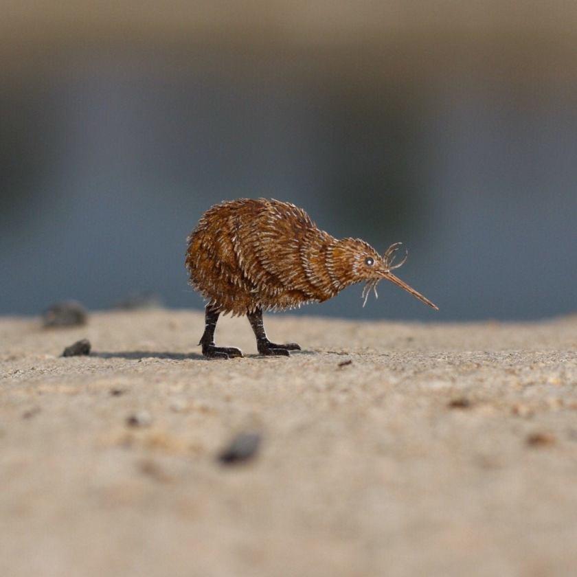 Papercut bird - Kiwi
