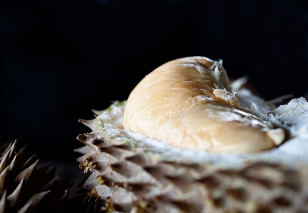 durian2
