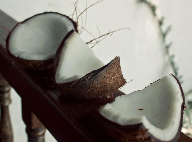 12coconuts2