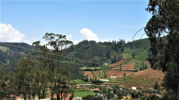 ooty by travelwithme
