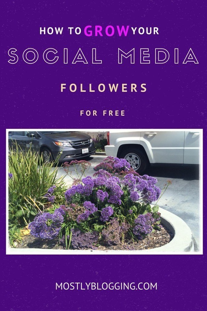 Bloggers can get more blog traffic by growing their social media presence