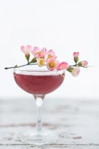 Cherry-Blossom-11