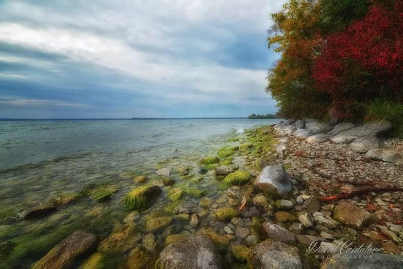 Water + Fall