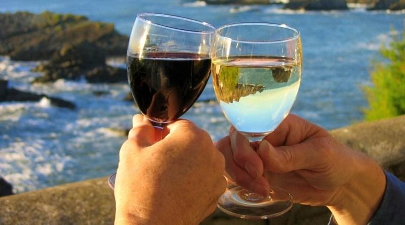 Cinco viñas chilenas