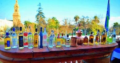 Cada 15 de mayo se celebra en Chile el Día Nacional del Pisco, el destilado más consumido en nuestro país y que se obtiene de uvas plantadas durante la colonización española