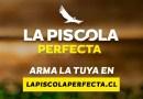 Alto del Carmen está organizando durante enero el concurso de la piscola perfecta