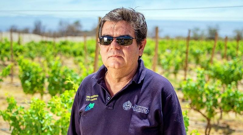 El Vino del Desierto es parte del patrimonio histórico y cultural de la Región de Tarapacá y un aporte a la economía local