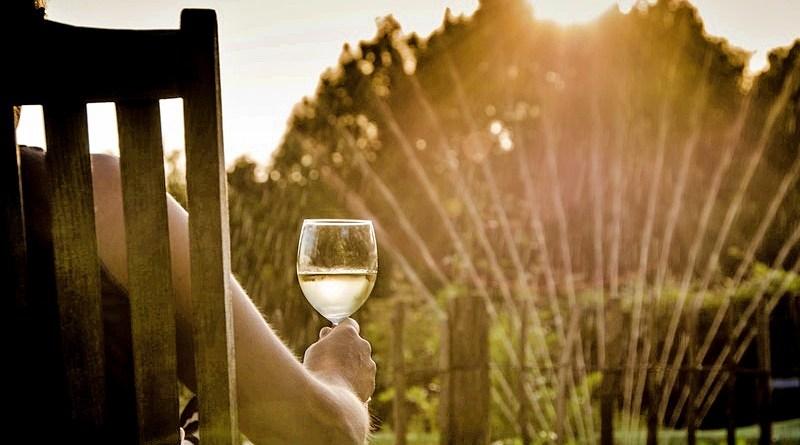 Se acercan las soleadas tardes de verano y, por eso, nada mejor que un vino fresco para acompañar los cálidos momentos de la temporada estival