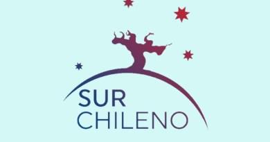 """Ocho viñateros de las regiones del Maule, Ñuble y La Araucanía se unieron bajo una nueva agrupación gremial denominada """"Sur Chileno""""."""