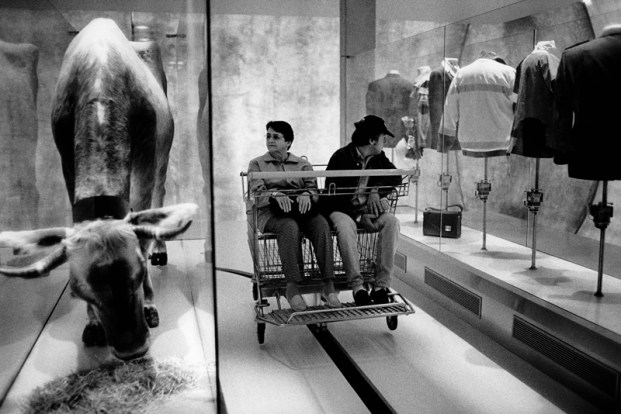 Switzerland. Canton Bern. Bienne. Expo 02. Migros area. Sideshow: Strangers in paradise. A couple, seated in a maxi shopping cart, looks at the exhibit in the glass cases. A dairy cow eats hay and clothes are displayed on dress stands. © 2002 Didier Ruef