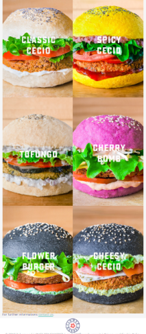 flower-burger-rotterdam