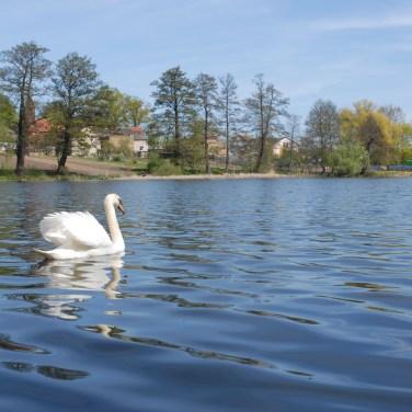 Boczów Jezioro