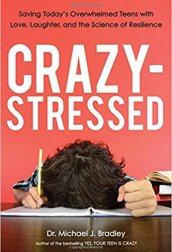 Crazy-Stressed cover image