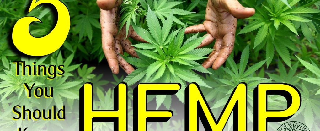 5 Things you should know about Hemp. Hemp facts. Hemp near me.